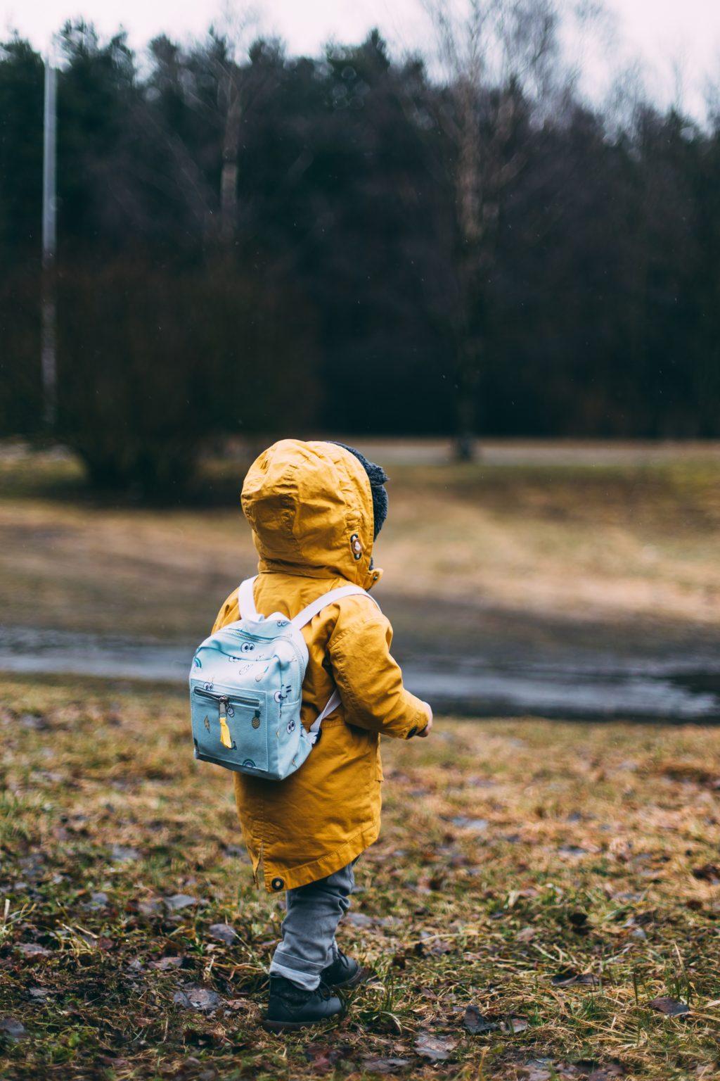 Dezvoltarea copilului instituționalizat psihica creier